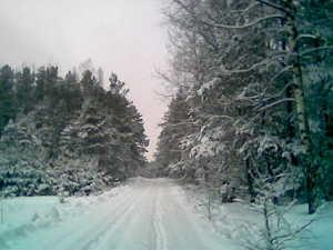 Zima20074